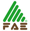 FAE Group S . p . A .