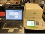 Амплификатор ПЦР Bio-Rad CFX96