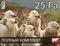 Электропастух для овец и ягнят на 25 га / 2 километра в 3 ряда