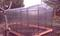 Теплица quot;Про 40x20quot; Двойные дуги ферма, каркас из оцинкованной трубы 40x20, Длина 8м.