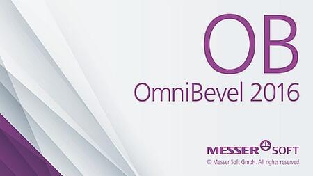 Программное обеспечение OmniBevel 2016