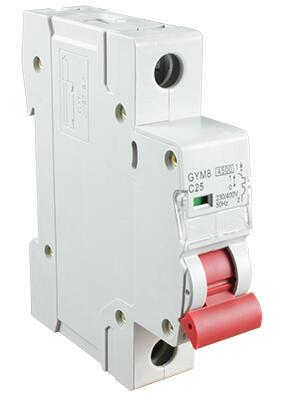 Автоматический выключатель GYM8-1P