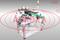 Линия этикетировки и датировки АЭ-5 для двустороннего лейблинга овальных флаконов