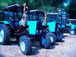 Трактор и минитрактор МТЗ Беларус - Раздел: Транспортная техника, коммунальная техника