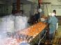 Линия переработки тыквы, кабачков, моркови, яблок и асептической фасовки