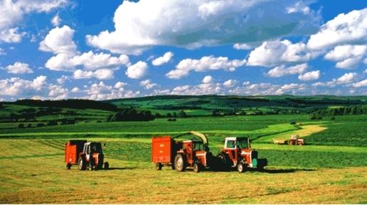 содержит сведения сельскохозяйственная кооперация в японии завтра