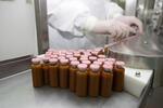 Новосибирская компания БИО-Веста начала поставлять пробиотик «Биовестин» на рынок Болгарии