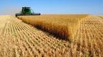 Аграриев призывают обновлять технику. «Это всем по силам»