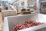 «Эссен Продакшн АГ» увеличить объем производства в два раза
