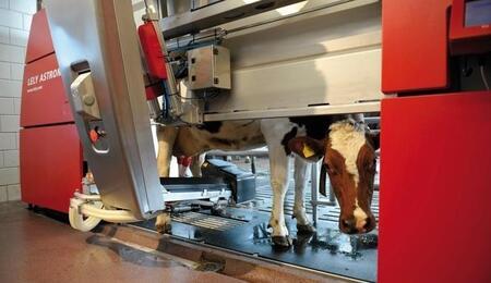 В Башкирии открылось первое в России сборочное производство доильных роботов