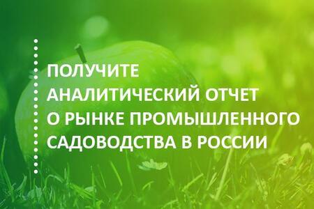 Отчет об итогах 2018 года и перспективах развития рынка промышленного садоводства в России