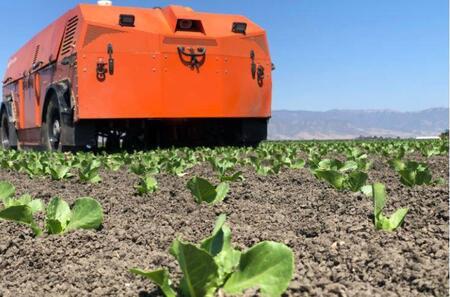 Робот для удаления сорняков - безхимическая альтернатива прополки для открытых полей