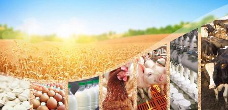 Рейтинг крупнейших компаний по производству пищевых продуктов