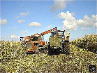 Федюкович Анатолий Николаевич:На сегодняшний день, сельское хозяйство не является высокорентабельным