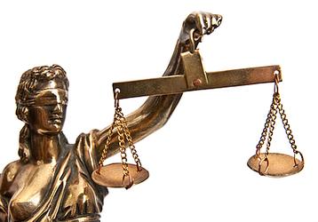 АЕГЭ отстаивает свои права