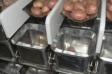Упаковка овощей и фруктов – повышаем ценность продукта.