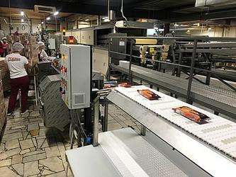 Автоматизированная конвейерная линия инспекции и упаковки вафель, Набережные Челны