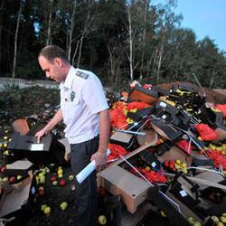 Правительство продлило действие правил уничтожения  сельскохозяйственной продукции на год