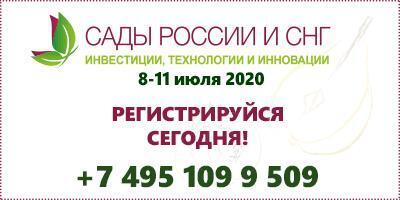 «Сады России и СНГ 2020» пройдет в новом формате: онлайн бизнес – форум.