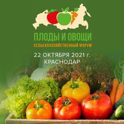 Александр Чумак на форуме Плоды и овощи России 2021
