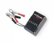 Зарядное устройство ALCS 2-24 A