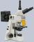 Люминесцентный микроскоп АЛЬТАМИ ЛЮМ вариант 1