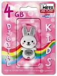 USB флэш-накопитель RABBIT GREY 4GB