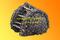 Транспортер в сборе со скребками (МАЗ/КАМАЗ) МДК-133Г4-93.31.170