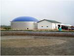 Биогазовые установки для переработки отходов сельского хозяйства, свиноферм, птицефабрик с получением энергии, тепла и биоудобрения.