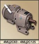 Мотор-редукторы цилиндрические двухступенчатые 1МРЦ2-80Н, 1МРЦ2-100Н