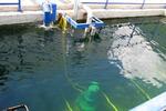 Очистка смешанных (промышленных) сточных вод