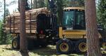 Форвардер Log Max для выборочной рубки