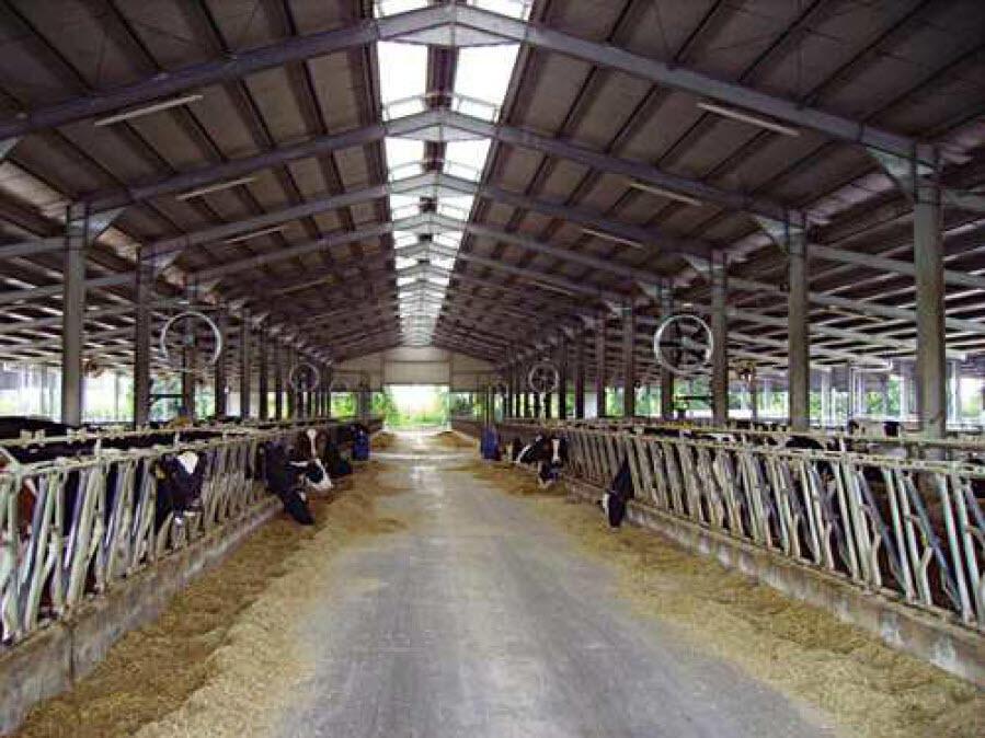 Туманообразование в производстве молока