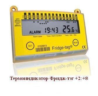Электронный термоиндикатор Фридж-тэг