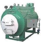 Котел паровой (парогенератор) на твердом топливе ВКВ-300Т