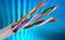 Кабели симметричные парной скрутки категории 5е для структурированных кабельных систем КССПВ, КССПП, КССППТР, КССПВНГ(А)–HF