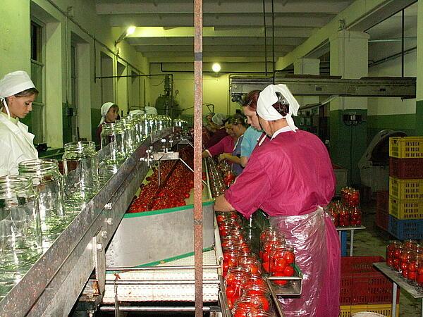 Оборудование для консервной промышленности.